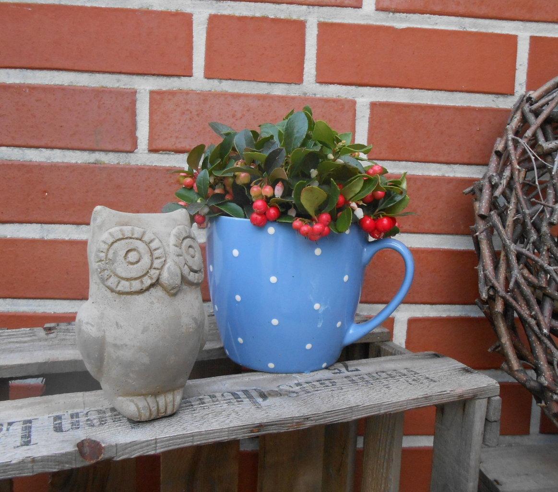 ländliche gartendeko eule - dekorationen, Garten ideen